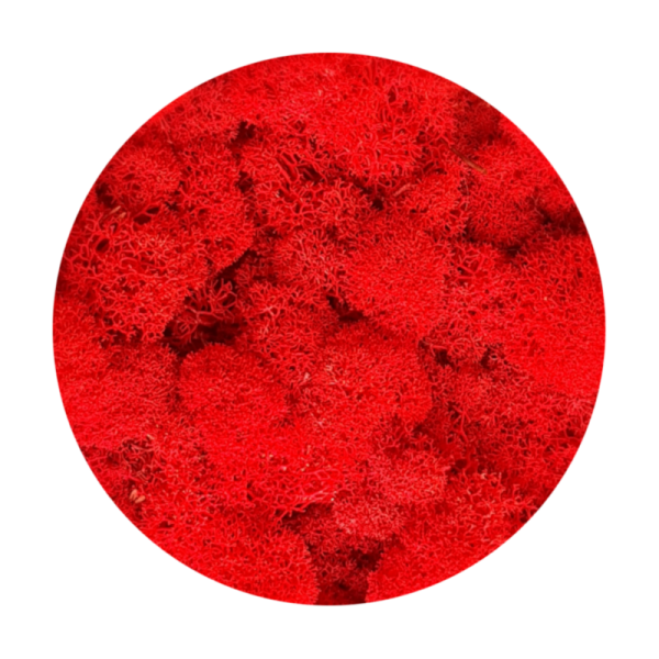 Purified Reindeer Moss Red 0,5 kg FINNISH